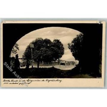 39128459 - Augustusburg Alte Linde Burgmauer