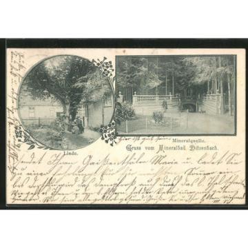 alte AK Bad Ditzenbach, Mineralquelle, Linde 1902