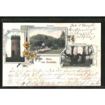 schöne AK Hüllhorst, Wartturm, Horsthöhe, Reinebergs Linde 1904