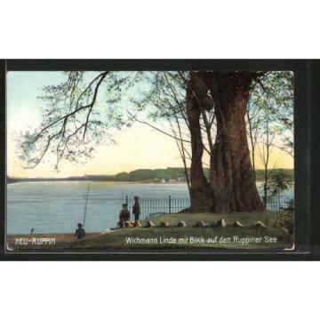 schöne AK Neuruppin, Wichmann-Linde mit Blick auf den Ruppiner See