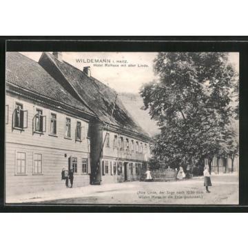 schöne AK Wildemann, Hotel Rathaus mit alter Linde