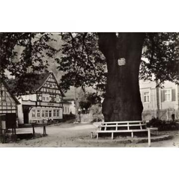 Ak Luftkurort Thal Ruhla Thüringen, Blick auf 600 jährige Linde - 1486814