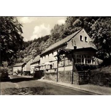 Ak Krippen Bad Schandau in Sachsen, Gasthaus zur Linde, Straßenansicht - 1408779