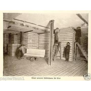 Kühlschrank Linde Nürnberg 4 S. Reklame & Historie 1927 Eismaschine Kühlhalle Ad