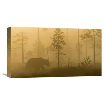Global Gallery 'Morning Fog' by Svein Ove Linde Graphic Art on Wrapped Canvas