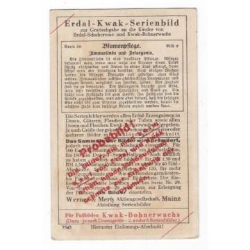 20/497 SAMMELBILD ERDAL BLUMENPFLEGE ZIMMERLINDE UND PELARGONIE MÄDCHEN TÖPFE