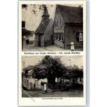 51401074 - Malchen Gasthaus zur Linde Tausendjaehrige Linde Preissenkung