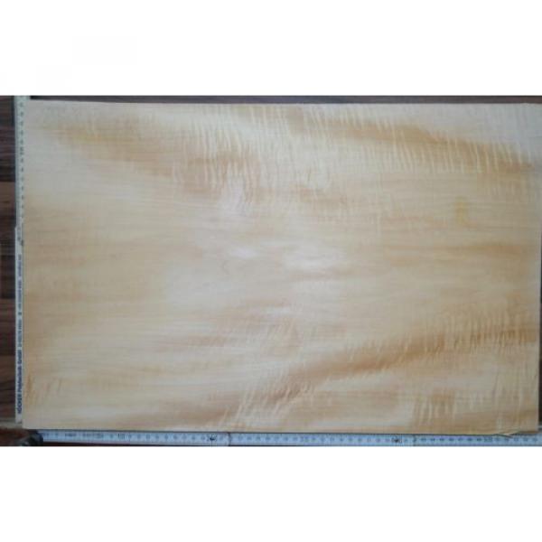Tonewood Basswood 1312 Bastelholz Body Linde Guitar Tonholz Blank Curly Figured #5 image