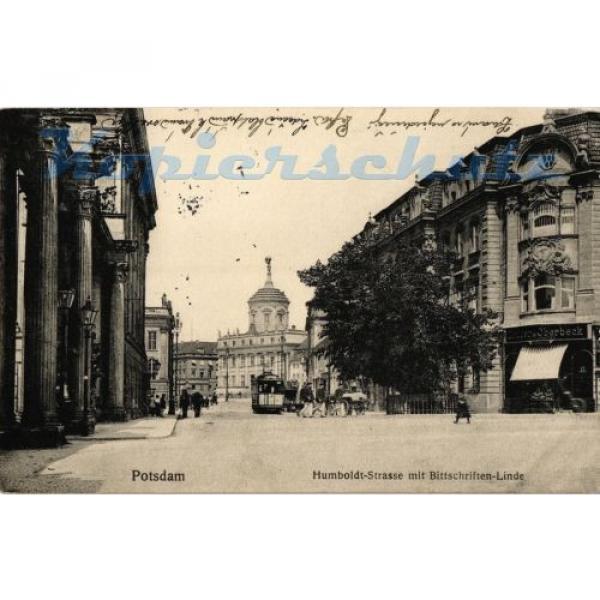 AK Potsdam, Humboldt-Strasse mit Bittschriften-Linde, 1915, 11/03 #1 image