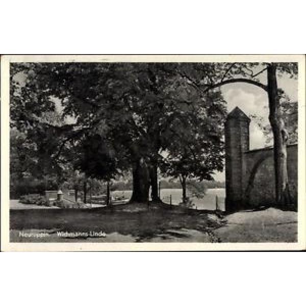 Ak Neuruppin in Brandenburg, Blick zur Wichmanns Linde - 1678883 #1 image