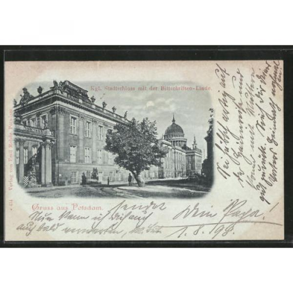 tolle Mondschein-AK Potsdam, Kgl. Stadtschloss mit der Bittschriften-Linde 1898 #1 image