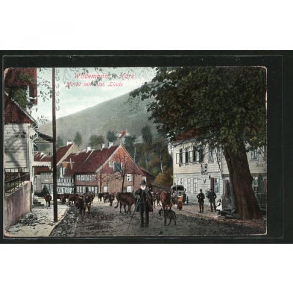 tolle AK Wildemann, Markt mit hist. Linde #1 image