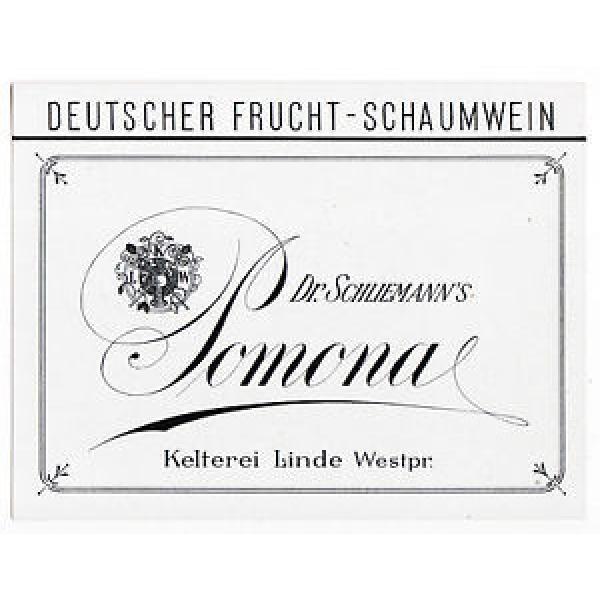 LINDE – Lipka Polen POMONA Dr. Schliemann Frucht-Schaumwein Etikett label x0845 #1 image