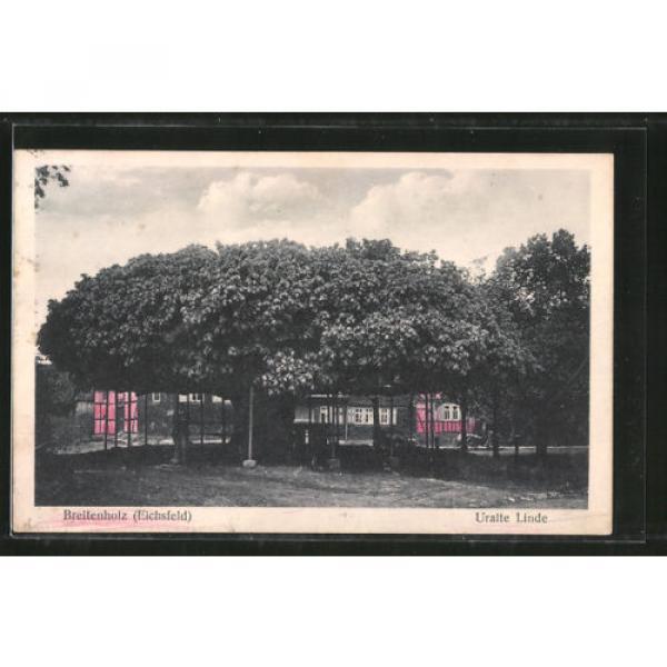 tolle AK Breitenholz, Uralte Linde 1934 #1 image