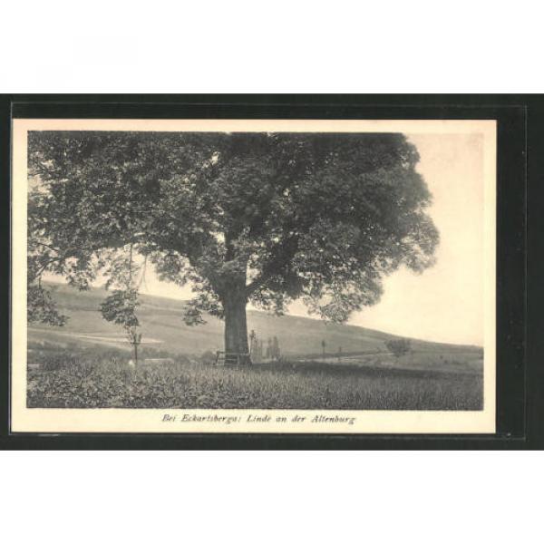 tolle AK Eckartsberga, Linde an der Altenburg #1 image