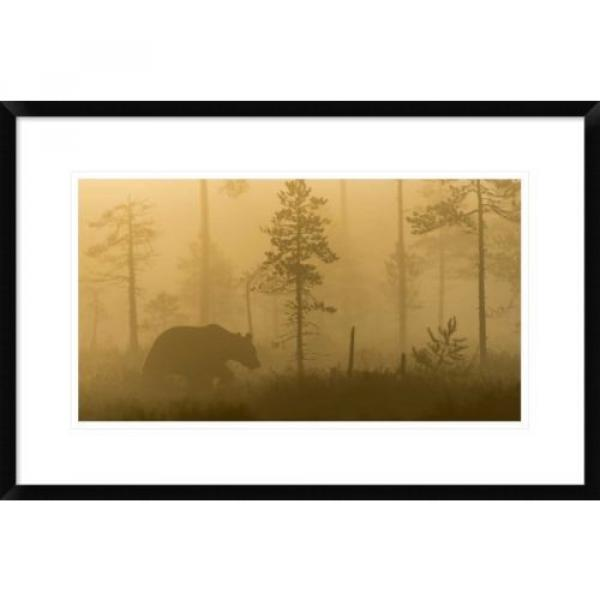 Global Gallery 'Morning Fog' by Svein Ove Linde Framed Photographic Print #1 image