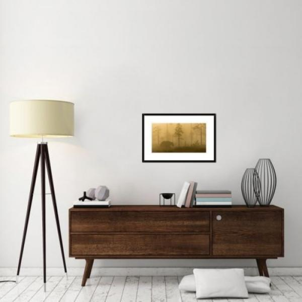 Global Gallery 'Morning Fog' by Svein Ove Linde Framed Photographic Print #4 image