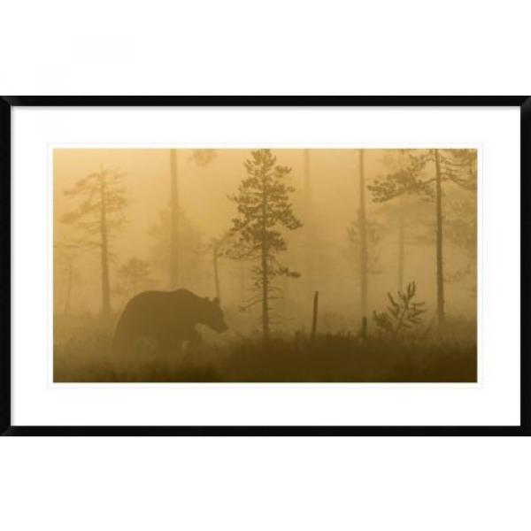 Global Gallery 'Morning Fog' by Svein Ove Linde Framed Photographic Print #5 image
