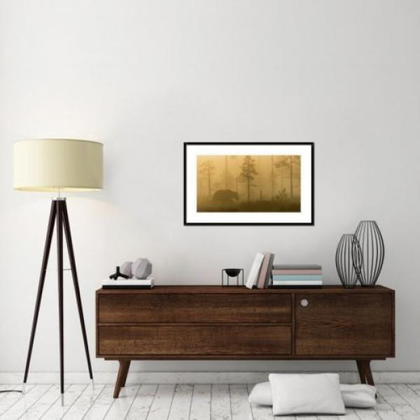 Global Gallery 'Morning Fog' by Svein Ove Linde Framed Photographic Print #7 image