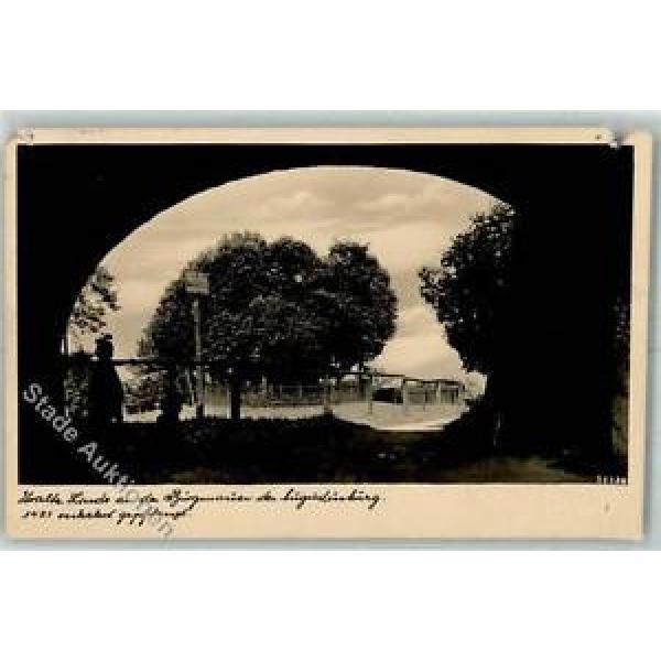 39128459 - Augustusburg Alte Linde Burgmauer #1 image