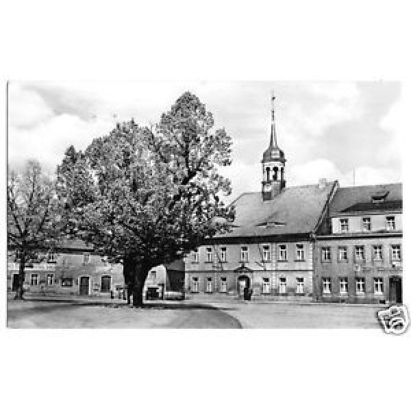 AK, Elstra Sa., Rathaus und 500 jährige Linde am Markt, 1960 #1 image