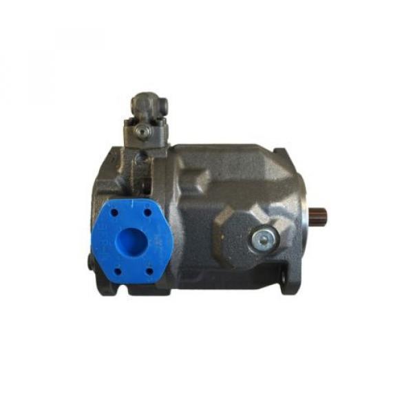 New Schwing Hydraulic Pump 30364139 10202812 r9024361062 Rexroth Bosch #3 image
